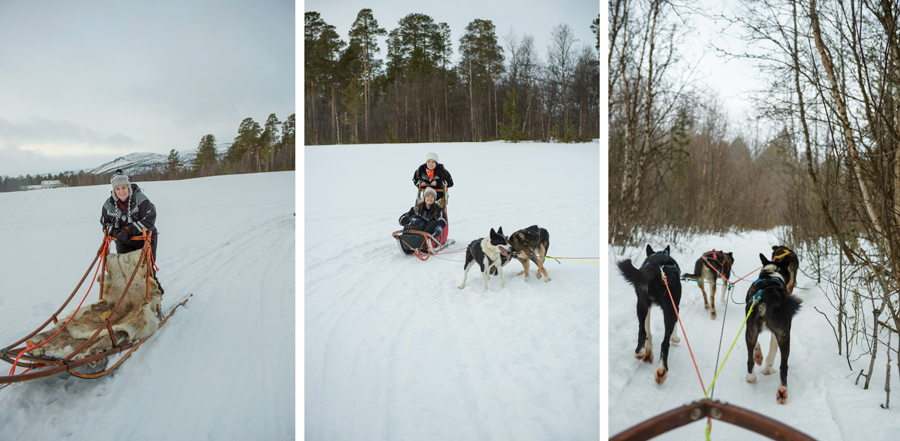 37 frames dogsledding 11