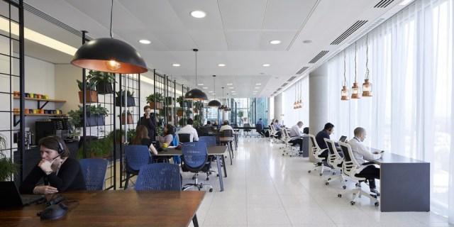 microsoft-workplace-g010617-1.jpg