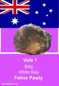 Candidates poster Billy Wide Bay
