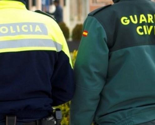 plazas policia nacional y guardia civil 2019