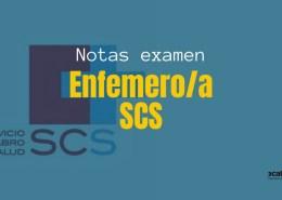 Resultados-provisionales-examen-Enfemero-SCS-2019 Lista definitiva admitidos oposiciones Fisioterapeuta SCS