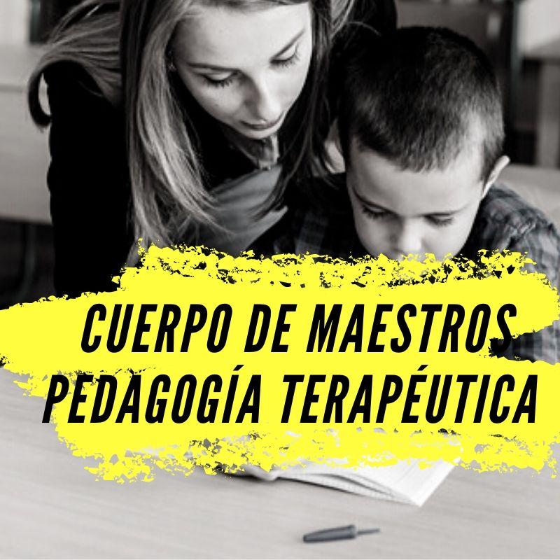 curso-preparacion-pedagogia-terapeutica-cantabria Protocolo santario para la celebracion de las oposiciones educacion 2021 Cantabria