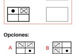 Preparacion-psicotecnico-oposiciones-policia-nacional-psicologo Información Convocatoria Policia Nacional