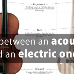 And Electric Parrot Ck3100 Wiring Diagram What Are The Differences Between An Acoustic Violin