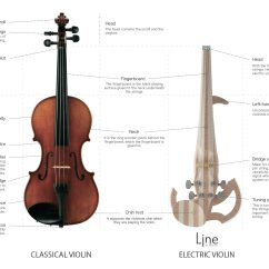 And Electric Parts Of A Wave Diagram What Are The Differences Between An Acoustic Violin Vs