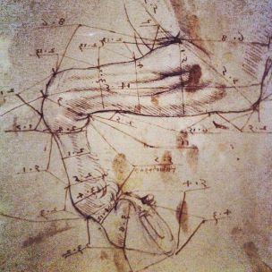 The Horse study by Leonardo Da Vinci