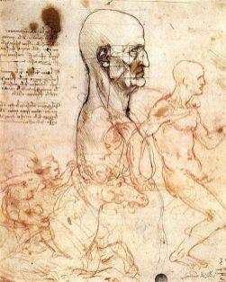 il viso referenza per disegno da Vinci