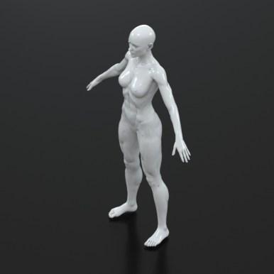 3d model for free2