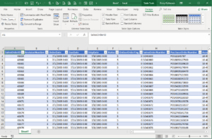 First Report In Excel