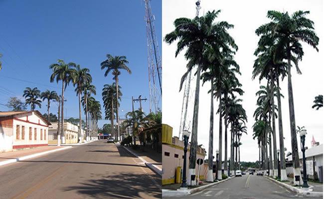 Fotos da cidade de Brasiléia no estado do Acre Brasil, faz divisa com a cidade de Cobija na Bolívia e com a cidade de Epitaciolândia.