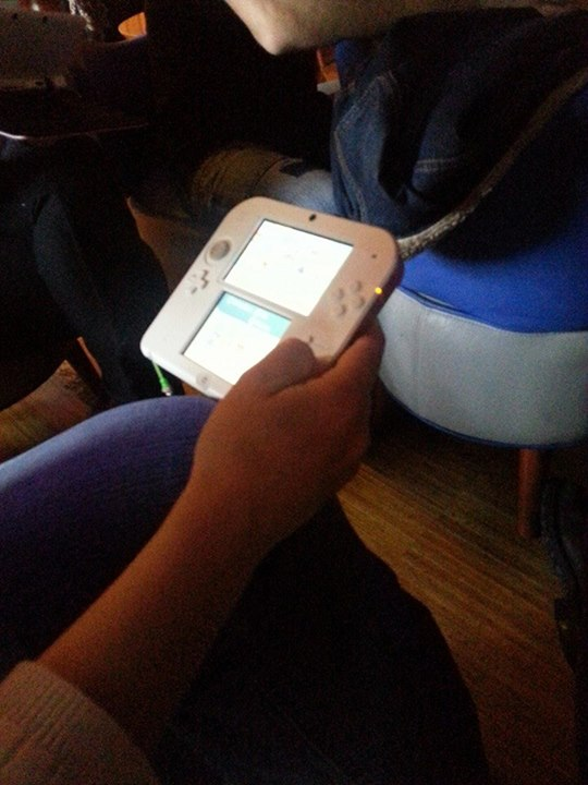 3DS in Nantes 47