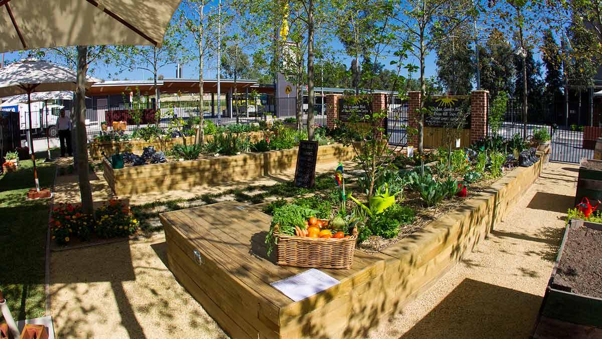 Community Kitchen Garden  Three in One