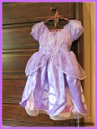 Sofia the First Birthday Party Dress