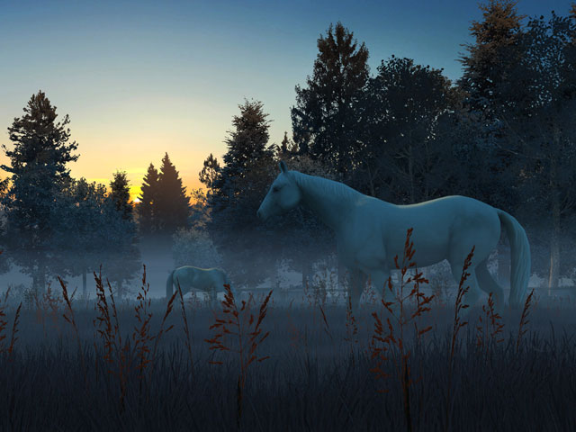 Android Fall Live Wallpaper Nature 3d Screensavers Fog Horses Live Wallpaper A