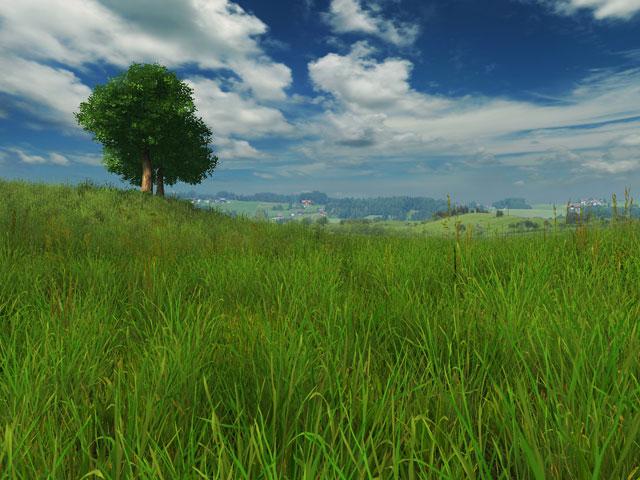 Android Fall Live Wallpaper Nature 3d Screensavers Grassland A Summer 3d