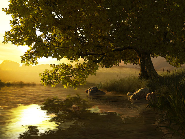 Nature 3D Screensavers  Lake Tree  A wonderful nook of nature on your monitor