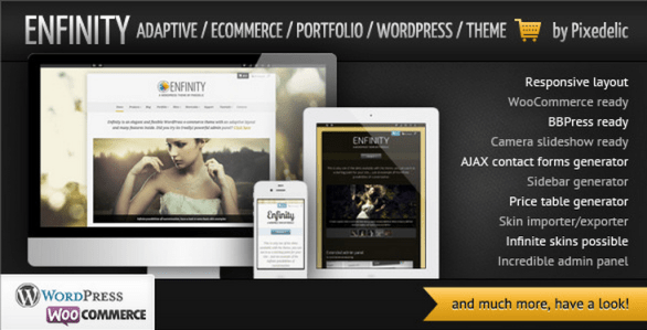 enfinity wordpress theme