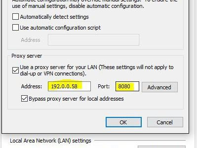 Opera manual proxy config tips