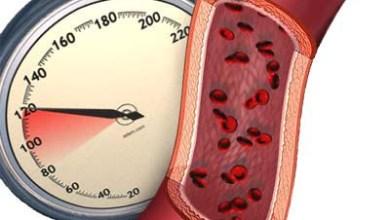 كيف يحافظ الجسم على ضغط الدم