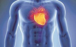 هل تساعد التمارين الرياضية مرضي الذبحة الصدرية؟