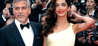 Welcome Clooney babies!