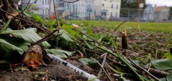 Finally – President Trump plans to declare opioid crisis a public health emergency