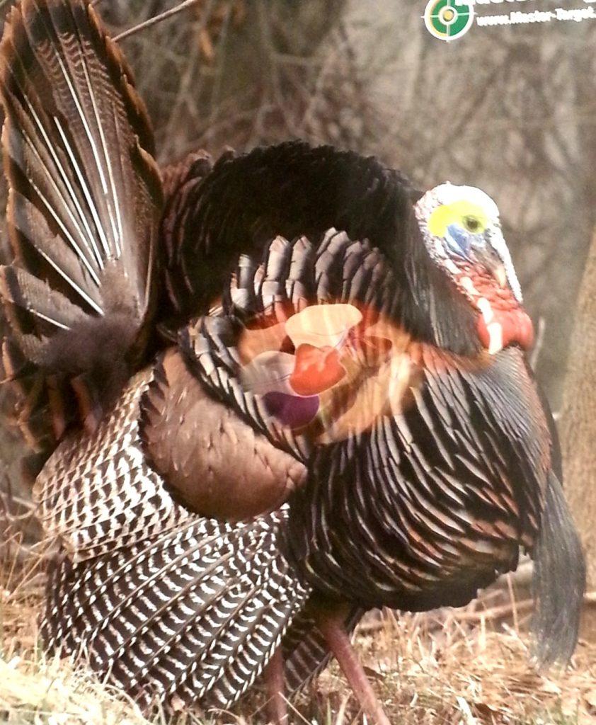 medium resolution of turkey target with vitals showing