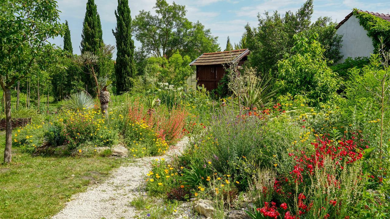 Natur im Garten   Die Vielfalt der Welt im eigenen Garten ...