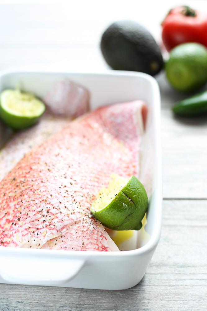 red snapper with avocado and tomato salsa with quinoa