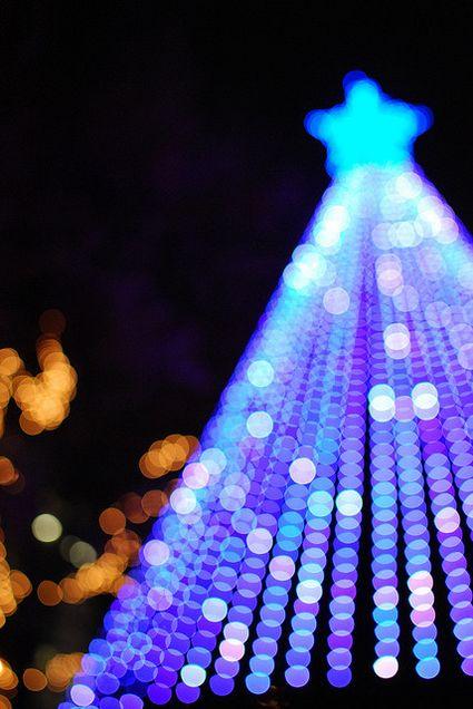 Tanti auguri di buon Natale a tutti!!!
