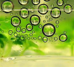 Biomasse e biocarburanti: elettromagnetismo per uccidere microbi e batteri delle alghe