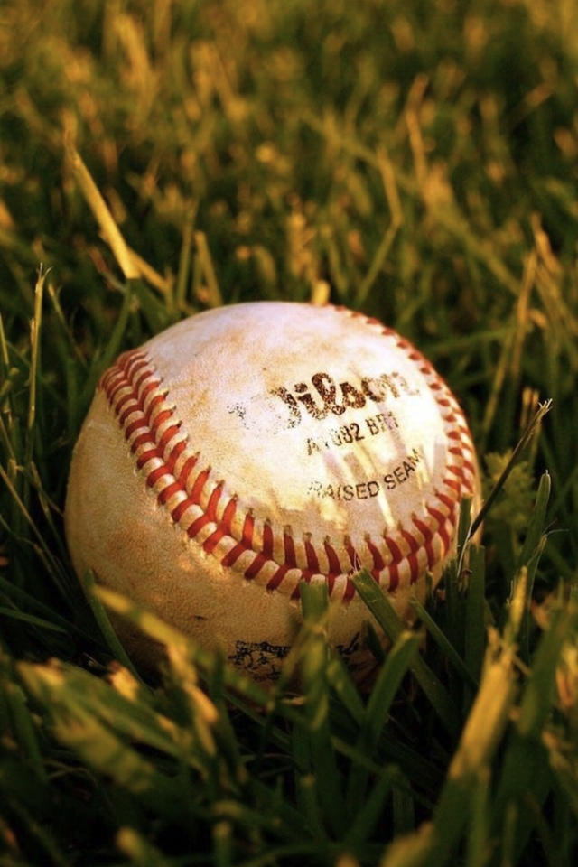 The baseball in the Grass 3W.jpg  The baseball in the Grass
