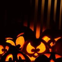 Funny Pumpkins Halloween