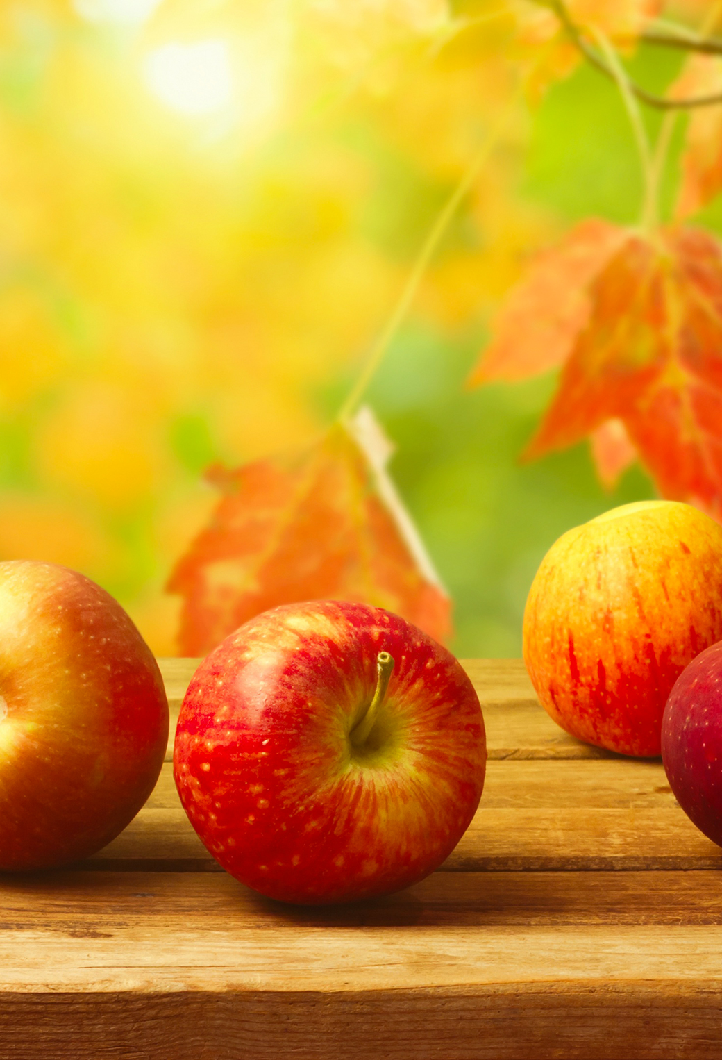 Fall Apples 3Wallpapers iPhone Parallax Fall Apples