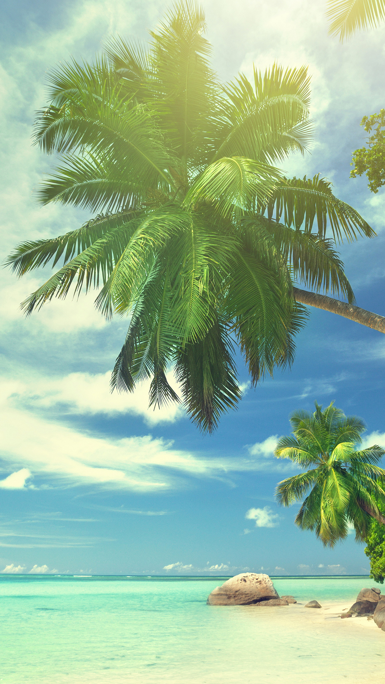 Apple Iphone 5 Wallpapers Hd Free Download Summer Tropical Paradise Wallpaper For Iphone X 8 7 6