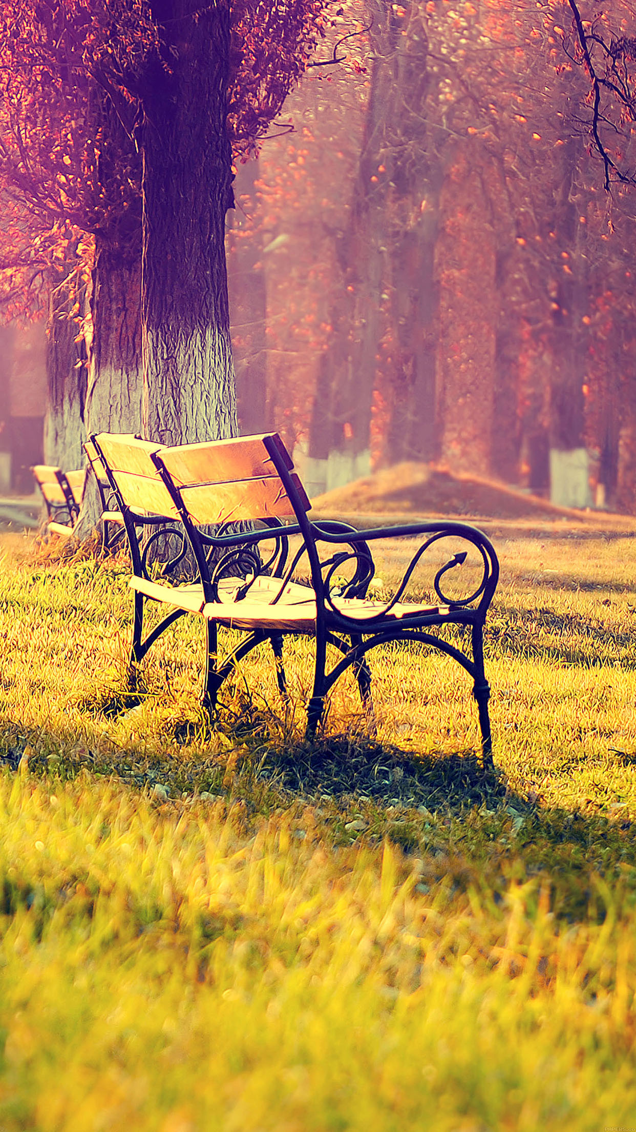 Chair Fall Park Chair Lonely Nature 3Wallpapers iPhone Parallax Chair: Fall park chair lonely nature