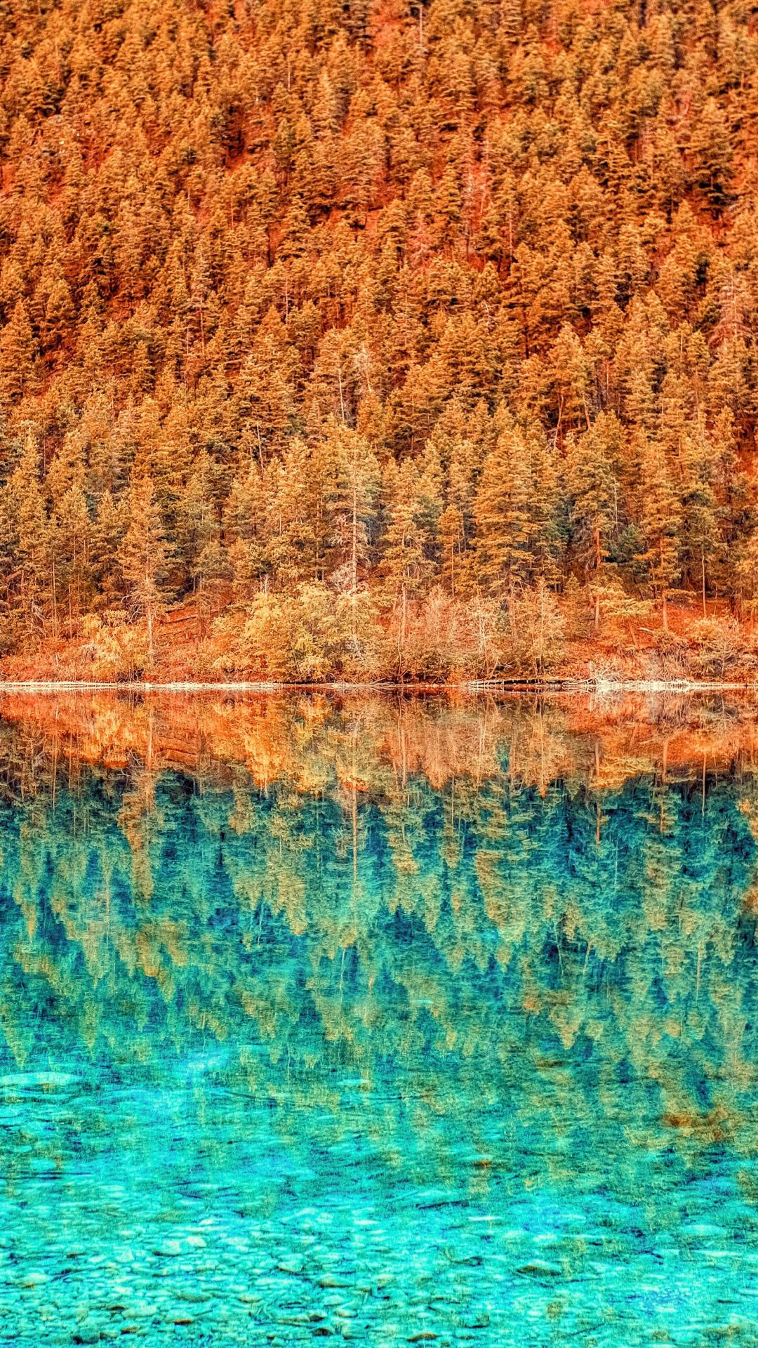 iPhone wallpaper 3wallpapers lake trees reflection Lake