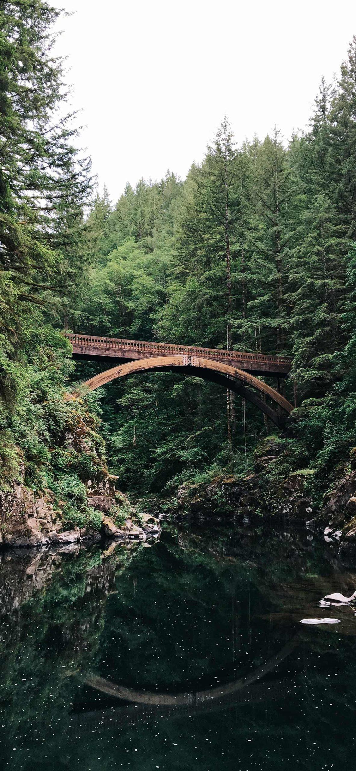 iphone Wallpaper bridge forest scaled Bridge