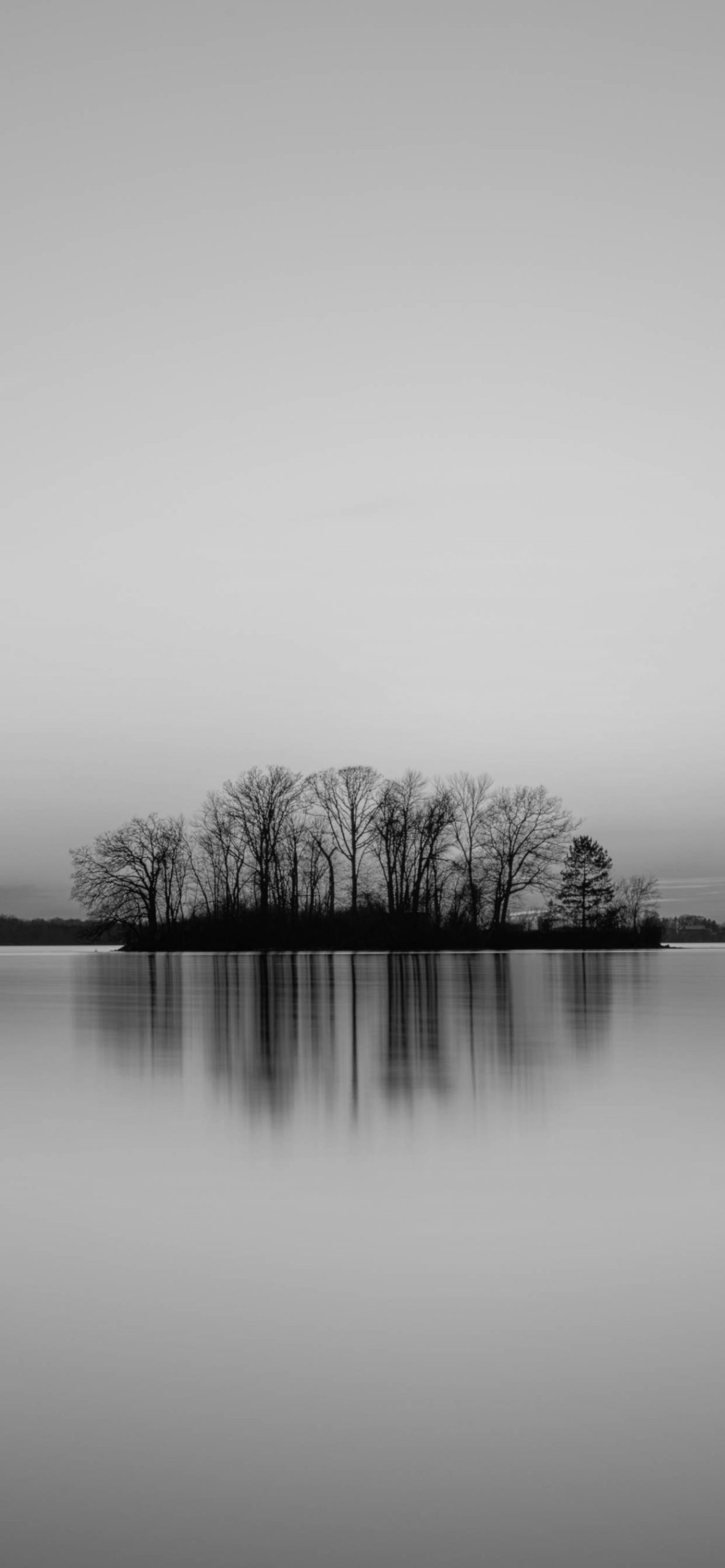 iPhone wallpapers black and white river trees Black and White