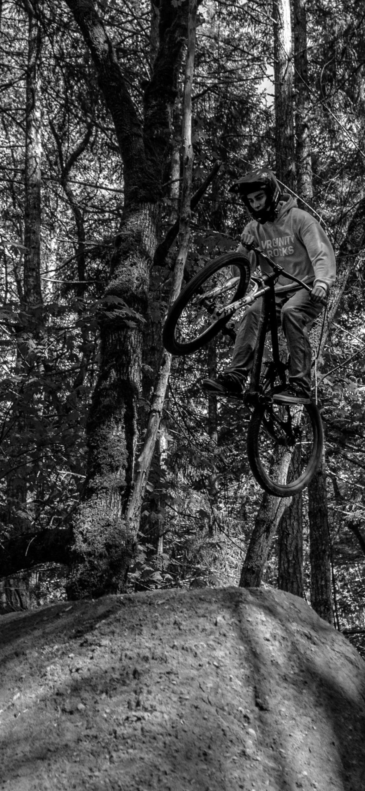 iPhone wallpapers bike monocolor forest scaled Bike