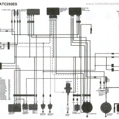 Honda Xr 125 Wiring Diagram Architecture Of 8085 Microprocessor With Block Pdf 1984 Atc Imageresizertool Com