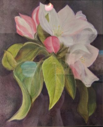 Apple Blossom by Penny Brewer-£55