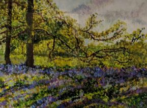 Bluebells-by-Janice-Andrews-£65