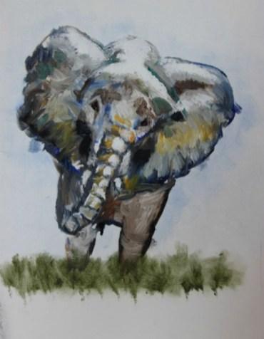 Elephant by Sanjay Synghal