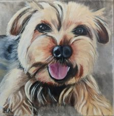 Miko by Helen Norfolk, Oil on Canvas SOLD