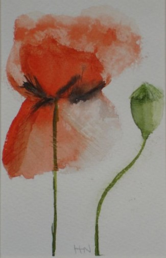 Small Poppy & Seed Pod by Helen Norfolk, Watercolour on Paper, 9cm x 14cm - SOLD