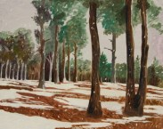 Snowscape with Trees by Sibel Roller-Walach