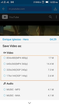 Video download options