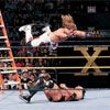 WrestleMania X: Ladder Match
