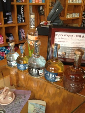 Cabo - Tequila Lined Up